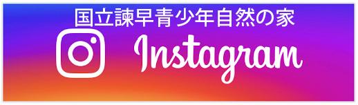 リンク:Instagram